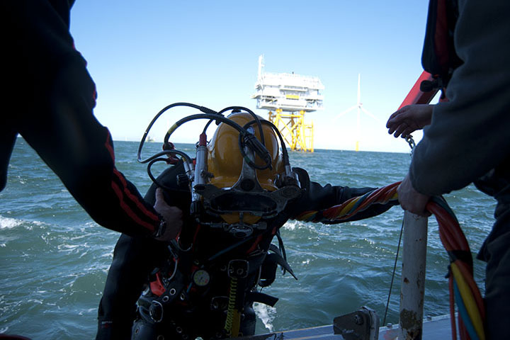 Diver helped on board